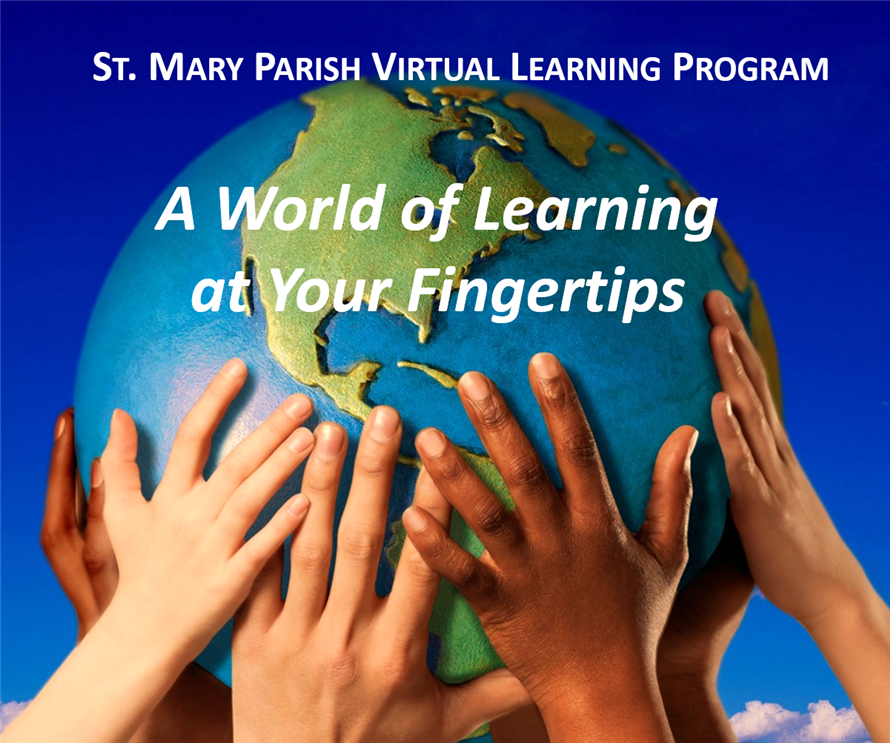 Schools and Programs / SMP Virtual Learning Program